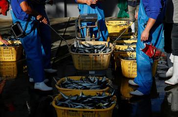 Fishermen weigh their catch at fish market in Ofunato