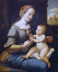 According Raffaelo Santi: Madonna with carnation