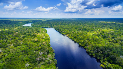 Photo sur Toile Brésil Amazon river in Brazil