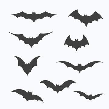 Set of bats on white background, vector illustration