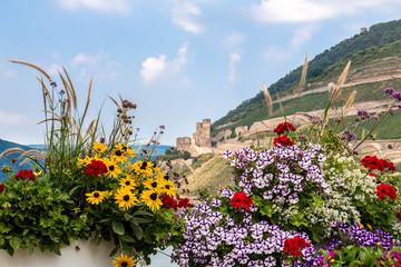 Burg Ehrenfels durch die Blumen gesehen