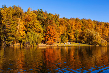 Upper Tsaritsyn pond in autumn. Tsaritsyno Museum-reserve. Moscow, Russia