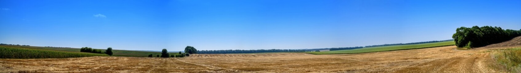Panorama of a plowed field Fotoväggar