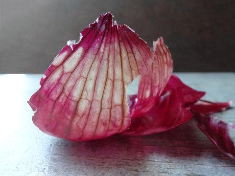 Closeup of Red Onion Skin