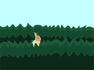 Rabbit in grass, illustration, vector on white background.
