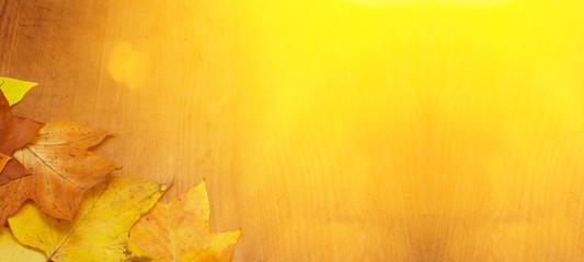 Fototapeta Panorama von viele bunten herbstlichen Blättern – Hintergrund braunes altes Holz obraz