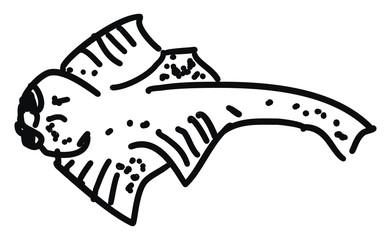 Angel shark, illustration, vector on white background.