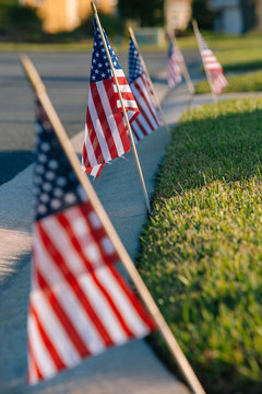 American flags on lawn.