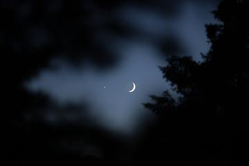 Moon Venus Conjunction