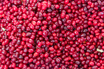 Cranberry fruits stacked on a surface as background.