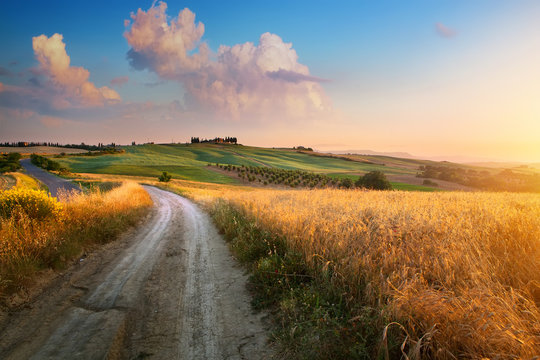 Italy autumn  countryside landscape, dirty road and farmland over sunset sky