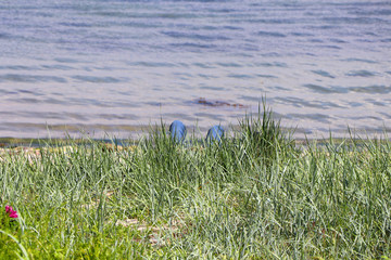 Male legs in jeans of a hidden man lying behind a grass dune on the beach