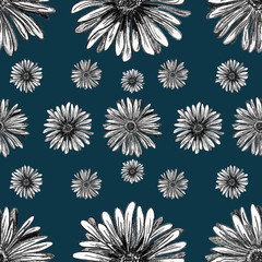 Hand drawn Gerbera flowers  - seamless pattern with blossom lines on navy blue background