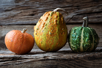 small decorative pumpkins on wooden background