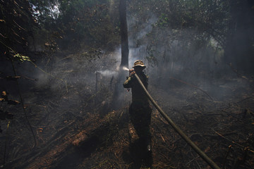 An Indonesian soldier tries to extinguish forest fires in Banjarbaru