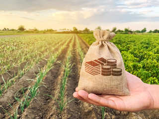 The farmer holds a money bag on the background of plantations. Lending and subsidizing farmers. Grants and support. Profit from agribusiness. Land value and rent. Taxes taxation. Agricultural startups Fototapete