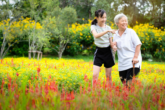 Happy asian granddaughter pointing hand and care,supporting senior grandmother in botanical garden,smiling elderly walking exercise,stress reduction,health care,family relationship,holiday concept