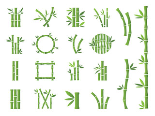 Green Bamboo stalks and leaves vector icons.