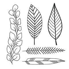 Decorative leaves pack. Nature print decorations. Leaves design elements. Decorative wall stickers.