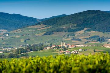 Regnie Durette village and vineyards, Beaujolais, France
