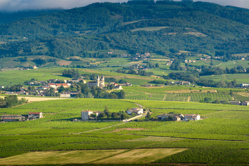Foto op Plexiglas Groene Village of Regnie-Durette and vineyards, Landscape of Beaujolais, France