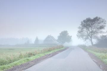 Wall Mural - Dutch farmlsnd in dense fog