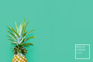 Pineapple at the green solid drop with place for text with color number tag. Trendy modern colorful background. Horizontal