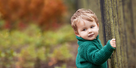 Little cute boy in the park. Close up picture of Lovely little boy in the autumn garden. Outdoor activities for children. Copy space