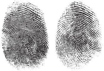 fingerprints isolated on white vector illustration