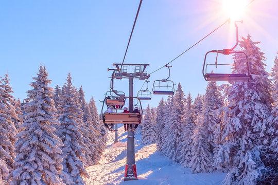 Panorama of ski resort, slope, skiers on the ski lift, white snow pine trees at pink sunset or dawn, Kopaonik, Serbia