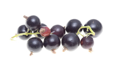 Ripe blackcurrant berries on a white background