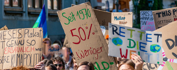 Panorama Fridays for Future Demonstration