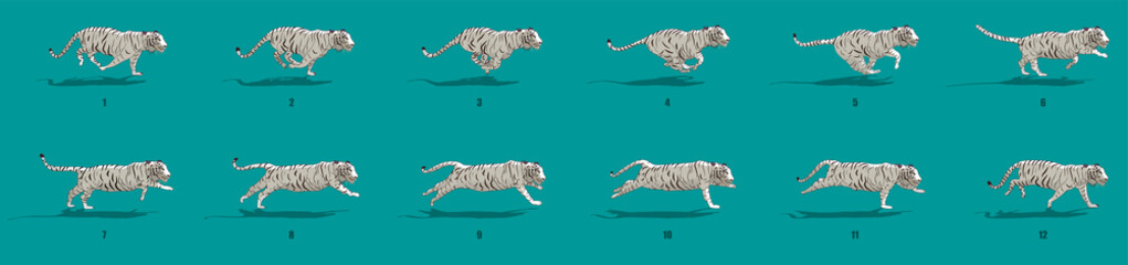 Tiger run cycle animation sequence