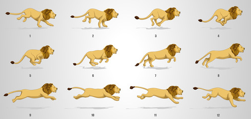 Lion run cycle animation sequence