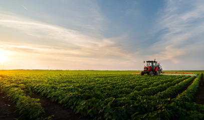Tractor spraying soybean field Fotoväggar