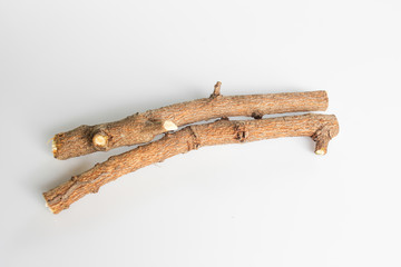 tree branch isolated on white background.
