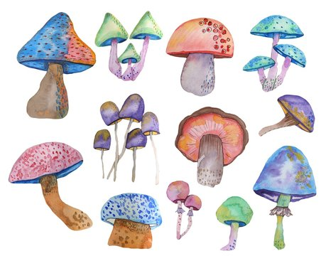 Watercolor set of fantasy multicolored mushrooms on a white background drawn by hand by an aquel. Perfectly suitable for printing on fabric, printing, wallpaper and other design