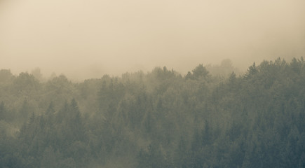 Printed kitchen splashbacks Khaki Autumn misty mountain cold background