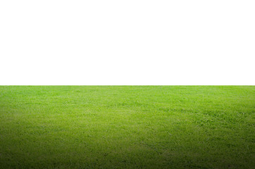 Green grass field isolated on white background with clipping path. Wall mural