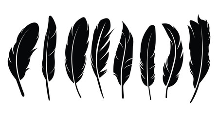 Pen feather icon simple style vector image. Feathers vector set in a flat style. isolated feathers silhouette Fotomurales