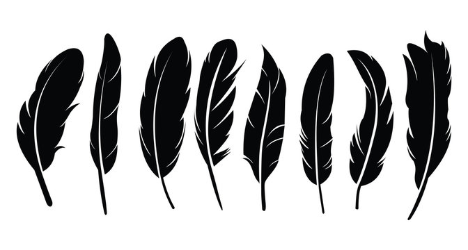 Pen feather icon simple style vector image. Feathers vector set in a flat style. isolated feathers silhouette