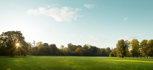 Beautiful panorama of city park in autumn - fototapety na wymiar