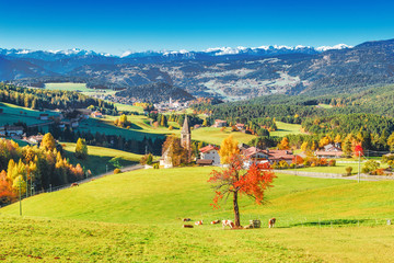 Wall Mural - Seasonal provincial autumnal landscape of Dolomite Alps valley in Italy, South Tyrol. Colorful red tree in foreground, Alpine mountains and small villages in background. Autumn season background.