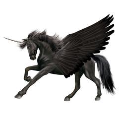 cheval,  volant, aile noir, fantastique  , animal, étalon, isolé, noir, licorne, galop, course, amoureux des chevaux, chevalin, nature, courir, arabe, mammifère, ferme, sauvage, poney, crin, de race,