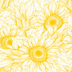 Sunflower hand drawn seamless vector pattern. Blooming flower ink pen yellow texture. Outline sketch illustration. Helianthus vintage freehand drawing. Floral, botanical wrapping paper, textile design