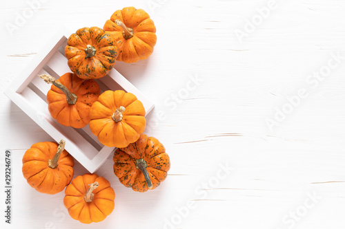 Small decorative pumpkins on white wooden background. Autumn, fall, thanksgiving or halloween day concept, flat lay, top view, copy space