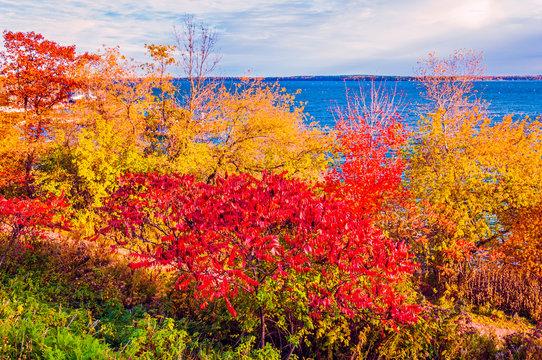 Wisconsin Autumn Colors