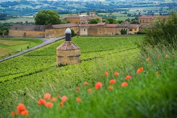 Bagnols village and landscape, Beaujolais, France