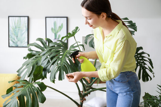 Young woman spraying water on houseplant at home