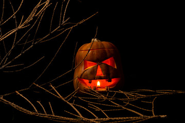 Halloween pumpkin with a scary face on a black background. Jack o lantern. Autumn holiday.